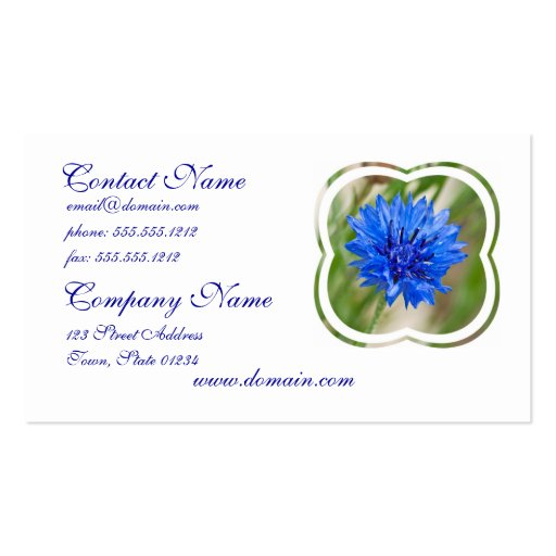 Blue Bachelor Button Busiess Cards Business Card