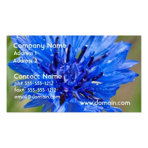 Blue Bachelor Button Business Cards