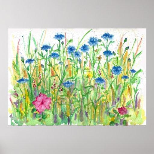 Blue Bachelor Button Cornflower Watercolor Art Poster