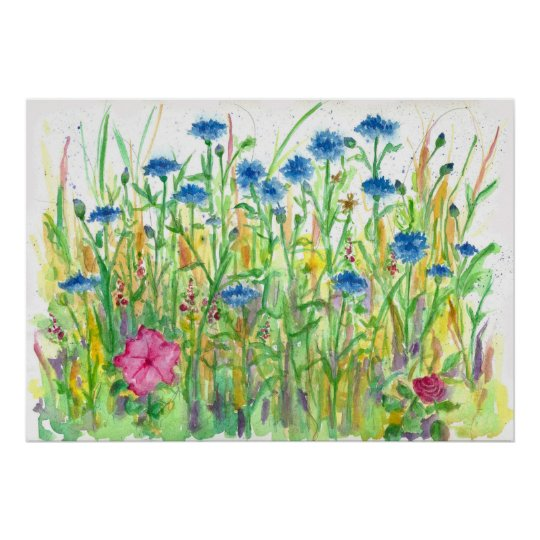 Blue Bachelor Button Cornflower Watercolor Art Poster