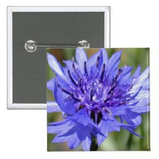 Blue Bachelor Button Flower