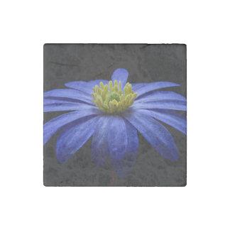 Blue Balkan Anemone flower Stone Magnet