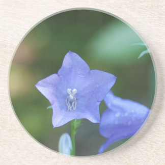 Blue Balloon Flower Coaster