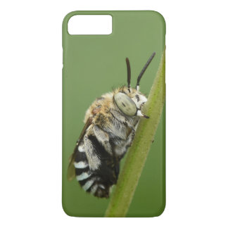Blue Banded Bee iPhone 8 Plus/7 Plus Case