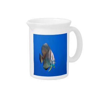 Blue Bat Fish Pitcher