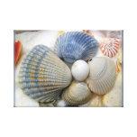 Blue Beach Shells Photography Canvas Print