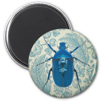 Blue Beetle on Feathery Blue Leaves 6 Cm Round Magnet