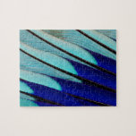 Blue-bellied Roller feathers Jigsaw Puzzle