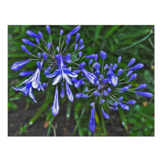 Blue bells postcard