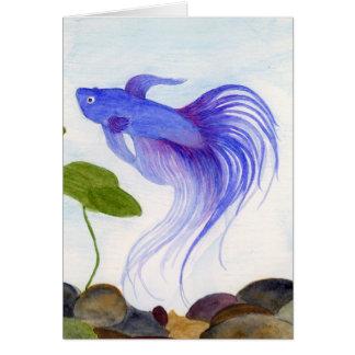 Blue Betta Card