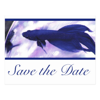 Blue Betta Fish Save The Date Postcard