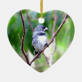 Blue Bird Ceramic Heart Decoration