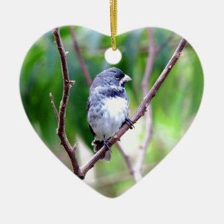 Blue Bird Christmas Ornament
