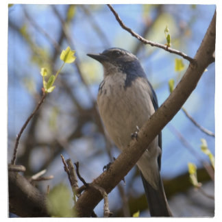 Blue Bird in a Tree Printed Napkins