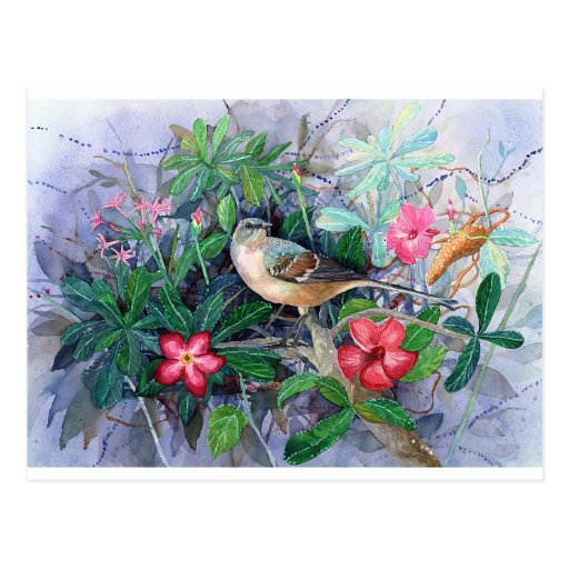 Blue Bird in Garden Post Cards