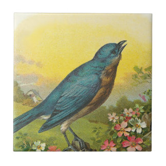 Blue Bird Small Square Tile
