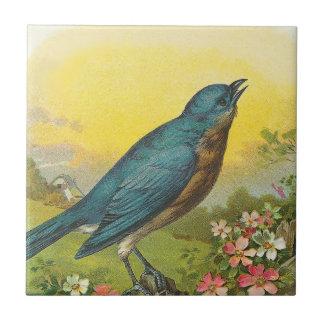 Blue Bird Small Square Tile
