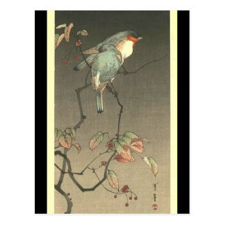 Blue Birds at Night by Seitei Watanabe 1851- 1918 Postcard