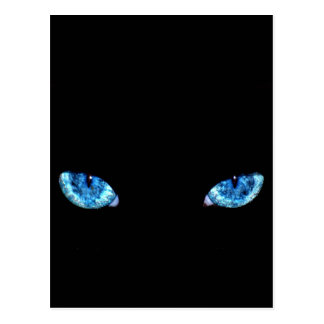 Blue Black Cat Eyes Postcard