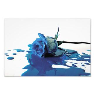 Blue Bleeding Rose Photographic Print