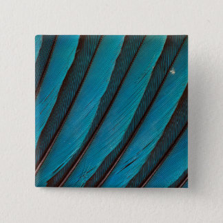 Blue Blue-Bellied Roller Feather Design 15 Cm Square Badge