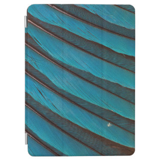 Blue Blue-Bellied Roller Feather Design iPad Air Cover
