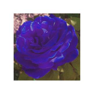 Blue BRITE rose Wood Wall Decor