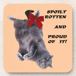 Blue British Shorthair Cat coasters set of 6