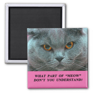 Blue British Shorthair Cat fridge magnet