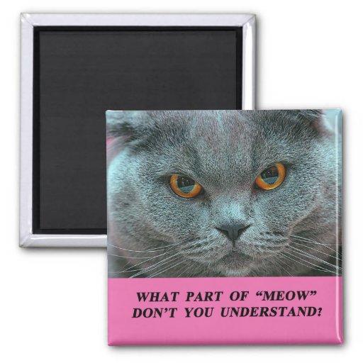 Blue British Shorthair Cat fridge magnet