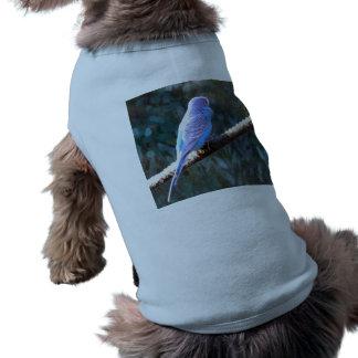 Blue Budgie Doggie Tshirt