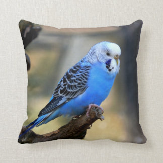 Blue Budgie Parrot Parakeet Throw Pillow