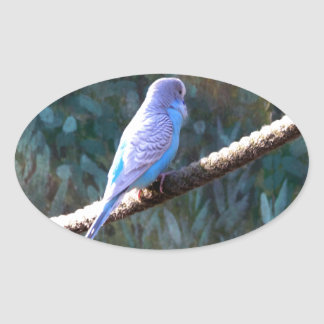 Blue Budgie Stickers