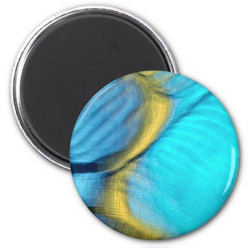 Blue bulges fridge magnets