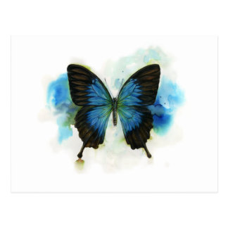 Blue Butterfly Any Occasion Stationery Postcard