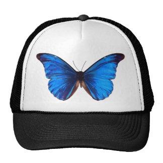 blue butterfly design cap