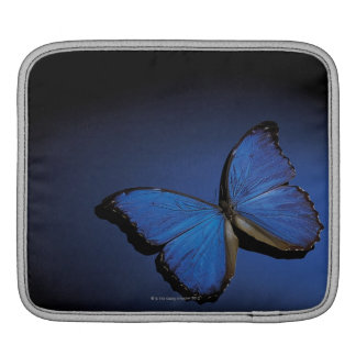 Blue butterfly iPad sleeve