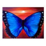 Blue Butterfly Morph Sunset - Multi Postcards