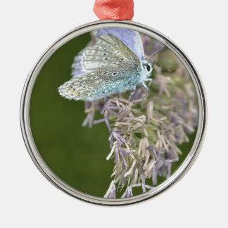 Blue Butterfly on Flower Christmas Ornament