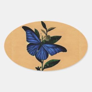 Blue butterfly oval sticker