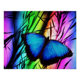 Blue Butterfly Rainbow Posters