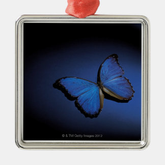 Blue butterfly Silver-Colored square decoration