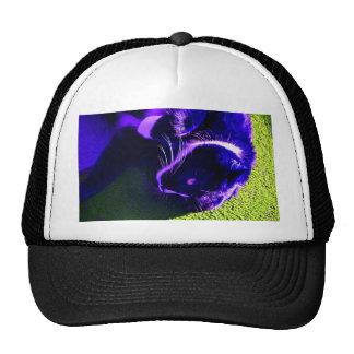 blue cat on side pop art feline animal image mesh hat
