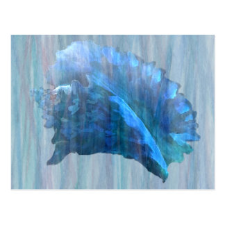Blue Conch Seashell Art Postcard