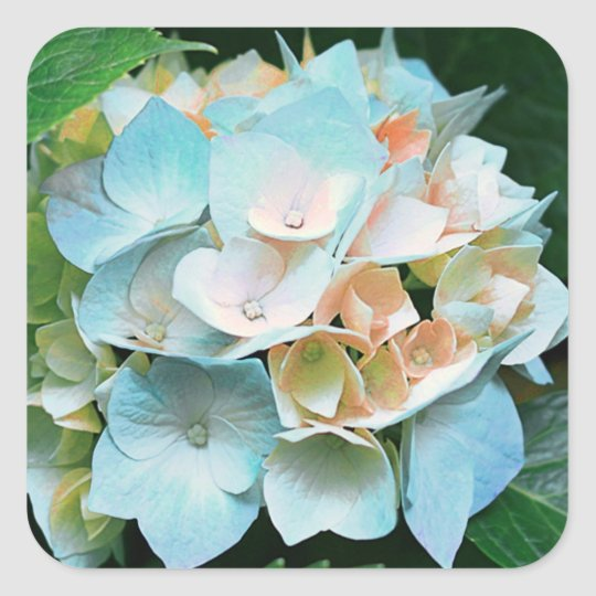 Blue Coral Peach Hydrangea Floral Stickers / Seals
