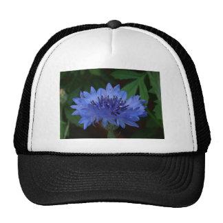 Blue Cornflower Hat