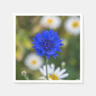 Blue cornflower paper serviettes