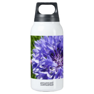Blue cornflower 10 oz insulated SIGG thermos water bottle