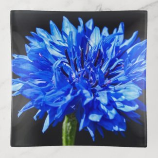 Blue Cornflower Trinket Tray