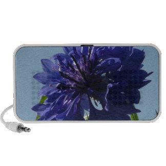 Blue Cornflowers iPod Speaker